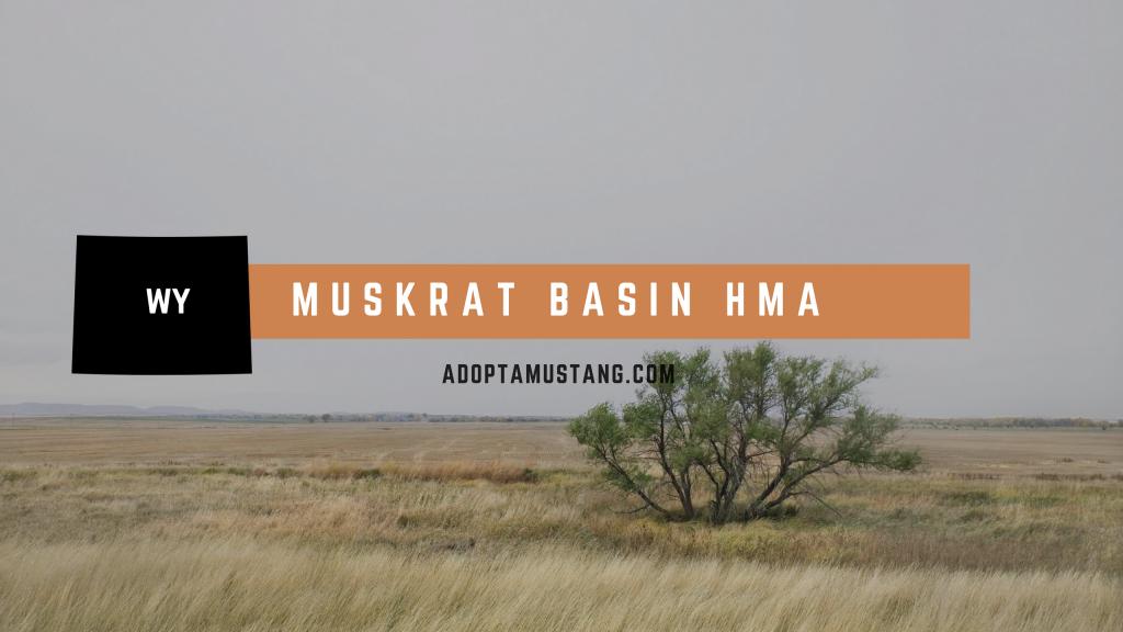 Muskrat Basin HMA